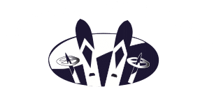 Luxury Transportation To Vail Resorts :: Snowbound Express Logo