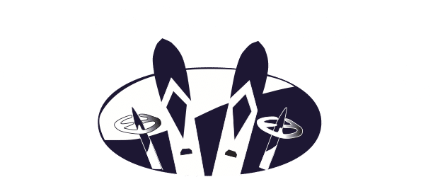 Luxury Transportation To Vail Resorts :: Snowbound Express Retina Logo